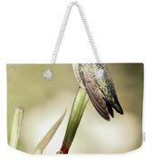 Perched Hummingbird On Flower Weekender Tote Bag