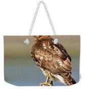 Perched Red Tail Hawk Weekender Tote Bag