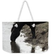 Percheron Kiss Weekender Tote Bag