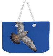 Peregrine Falcon I Weekender Tote Bag