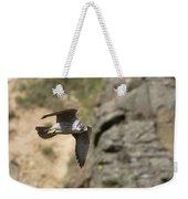 Peregrine Falcon In Flight Weekender Tote Bag