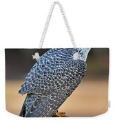 Peregrine Falcon Perched Weekender Tote Bag