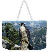 Peregrine Falcon, Yosemite Valley, Western Sierra Nevada Mountain, Echo Ridge Weekender Tote Bag