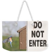Perfect Nesting Box 2 Weekender Tote Bag
