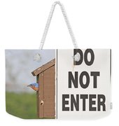 Perfect Nesting Box Weekender Tote Bag