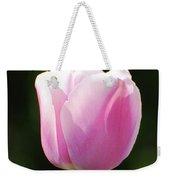 Perfect Pastel Pink Flowering Tulip Blossom In Spring Weekender Tote Bag