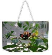 Perfect Set - Butterfly Weekender Tote Bag