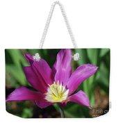 Perfect Single Dark Pink Tulip Flower Blossom Blooming Weekender Tote Bag