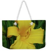 Perfect Yellow Daylily Flowering In A Garden Weekender Tote Bag