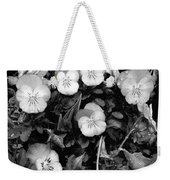 Perfectly Pansy 18 - Bw - Water Paper Weekender Tote Bag