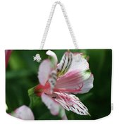 Perivian Lily With Ant Weekender Tote Bag