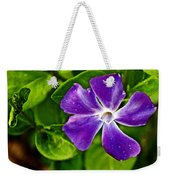 Periwinkle At Pilgrim Place In Claremont-california Weekender Tote Bag