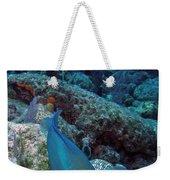 Perky Parrotfish Weekender Tote Bag