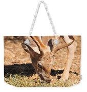 Persian Fallow Deer Weekender Tote Bag