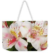 Peruvian Lilies  Flowers White And Pink Color Print Weekender Tote Bag