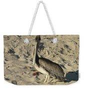 Peruvian Pelican Standing On A Sandy Beach Weekender Tote Bag