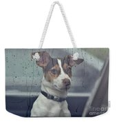 Pet Looking Out Car Window On Rainy Day Weekender Tote Bag