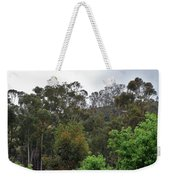 Peters Canyon In The Rain 8 Weekender Tote Bag