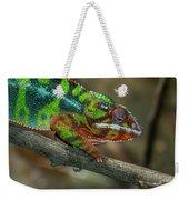 Ambilobe Panther Chameleon Weekender Tote Bag