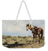 Picasso Looks Over Sand Wash Weekender Tote Bag