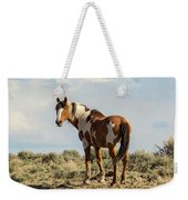 Picasso On The Horizon Weekender Tote Bag