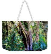 Picnic Time In Florida Weekender Tote Bag