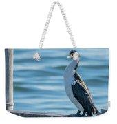 Pied Cormorant On Old Wharf Weekender Tote Bag