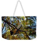 Pied Imperial Pigeon Weekender Tote Bag