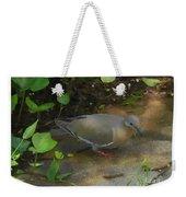 Pigeon Poster Weekender Tote Bag