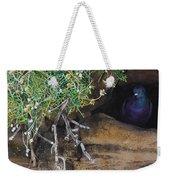 Pigeonholed Weekender Tote Bag