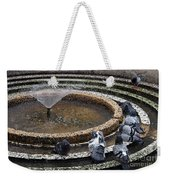 Pigeons Are In The Fountain Refreshes Weekender Tote Bag