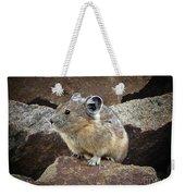 Pika - Weminuche Wilderness - Colorado Weekender Tote Bag