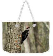 Pileated About To Take Flight Weekender Tote Bag