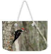 Pileated Woodpecker Looking For A Perspective Mate Weekender Tote Bag