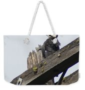 Pileated Woodpecker On A Power Pole Weekender Tote Bag