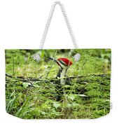 Pileated Woodpecker On The Ground No. 1 Weekender Tote Bag