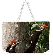 Pileated Woodpecker Ready To Fledge Weekender Tote Bag