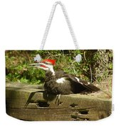 Pileated Woodpecker1 Weekender Tote Bag