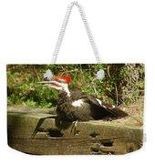 Pileated Woodpecker1 Weekender Tote Bag