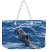 Pilot Whale 2 Weekender Tote Bag