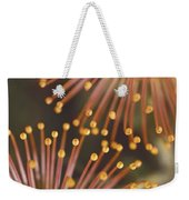Pin Cushion Protea Weekender Tote Bag
