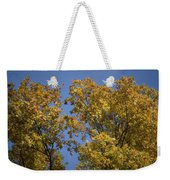 Pin Oaks In The Fall No 1 Weekender Tote Bag
