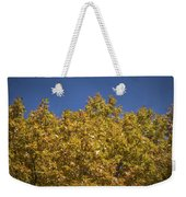 Pin Oaks In The Fall No 2 Weekender Tote Bag