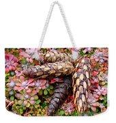 Pine Cones Art Print Botanical Garden Baslee Troutman Weekender Tote Bag