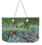 Pine Marten With Attitude Weekender Tote Bag