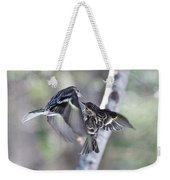 Pine Siskins Fighting 6829 Weekender Tote Bag