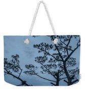 Pine Tree Antigua Guatemala Weekender Tote Bag