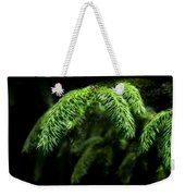 Pine Tree Brunch Weekender Tote Bag by Svetlana Sewell