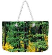 Pine Trees In Autumn Weekender Tote Bag