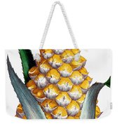 Pineapple, 1789 Weekender Tote Bag